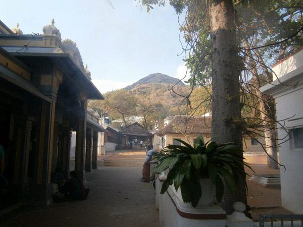 tamil nadu diario di viaggio