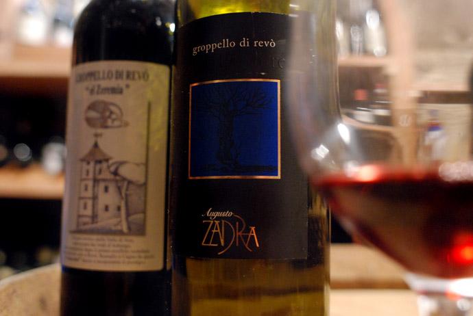 wine tasting in Trentino