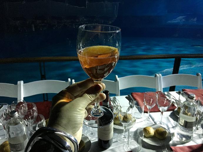 Capodanno insolito all'acquario di Genova