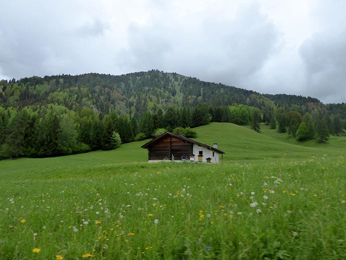 Weekend in Val di Fiemme con la pioggia