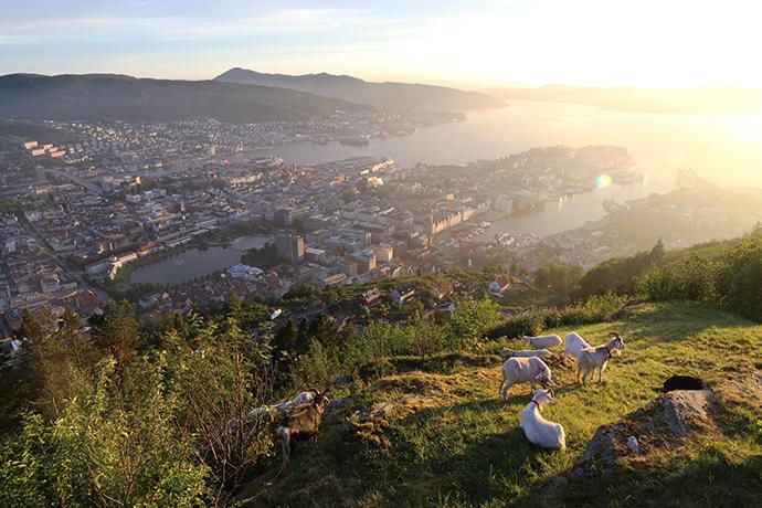 Visitare Bergen Norvegia