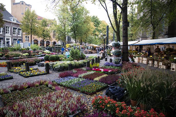 Utrecht cosa vedere mercato dei fiori