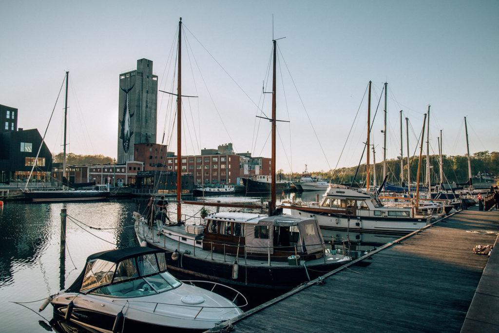Odense cosa vedere