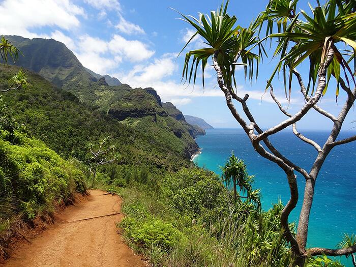 Hawaii low cost