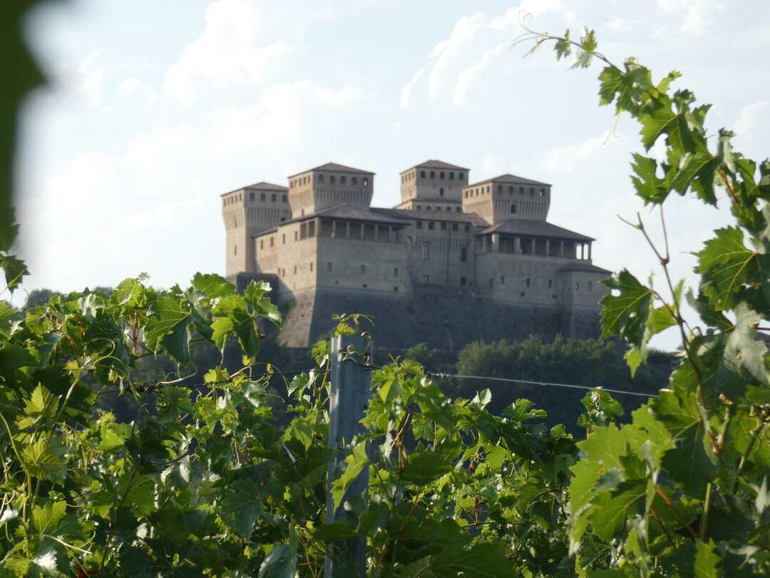 Castello Vigne